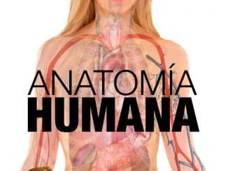 Anatomia humana - Libro gratuito