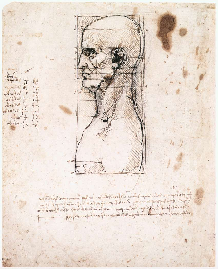 Leonardo da Vinci – Male head in profile with proportions