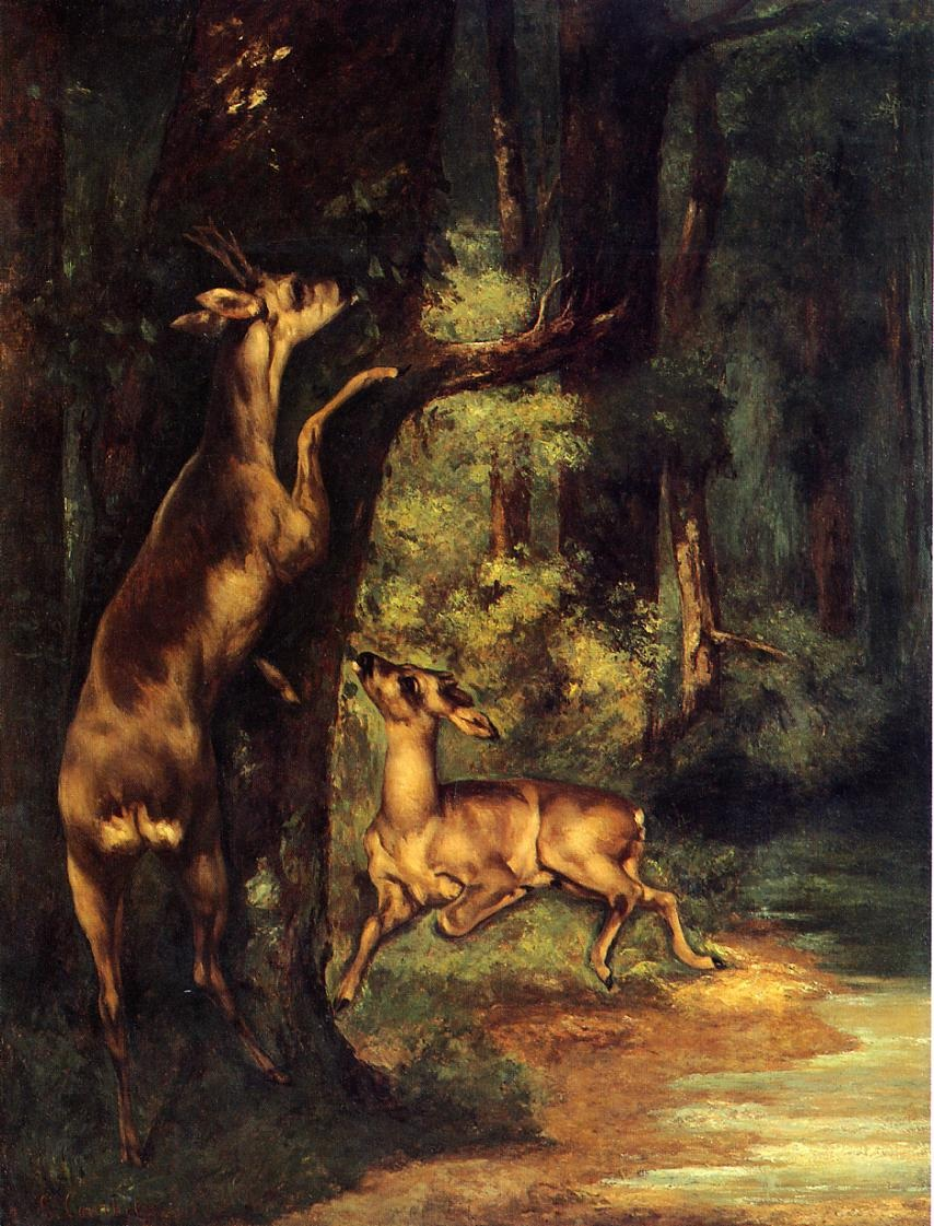 Male and Female Deer in the Woods – Gustave Courbet